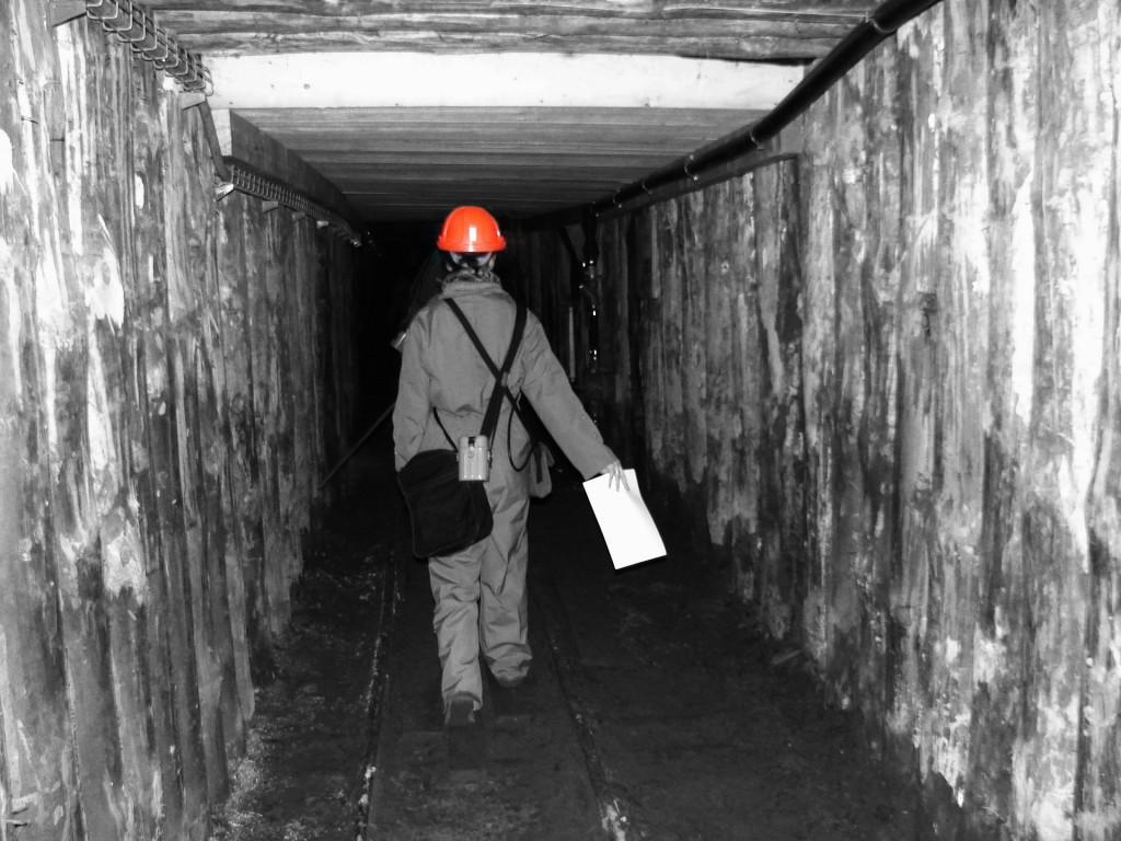 mine-822947_1920