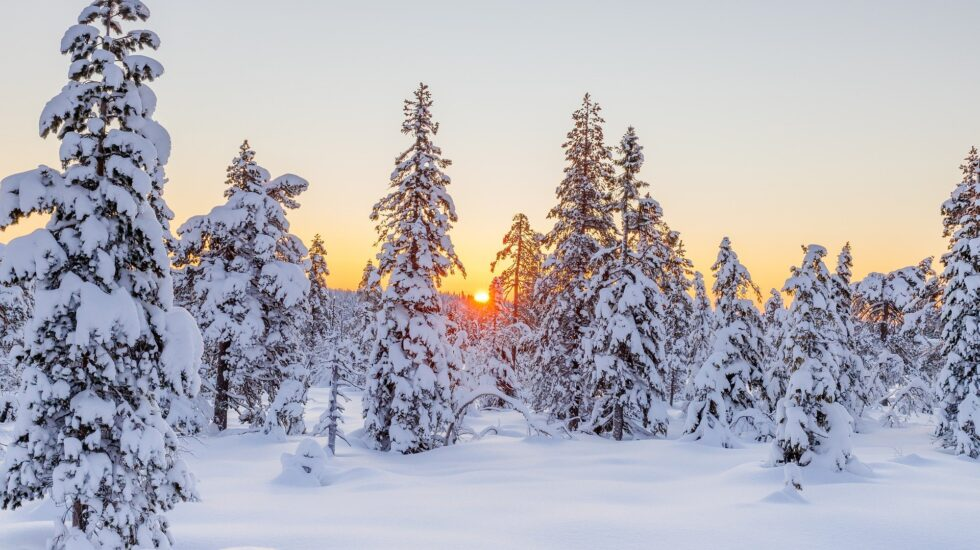 winter-5892335_1920